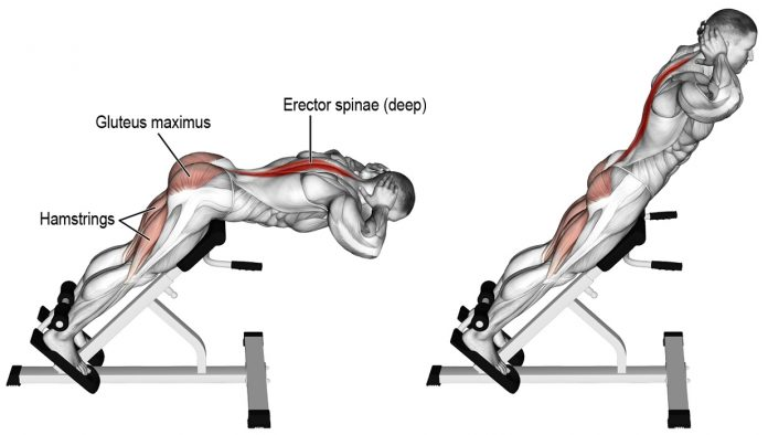 45-degree back extensions