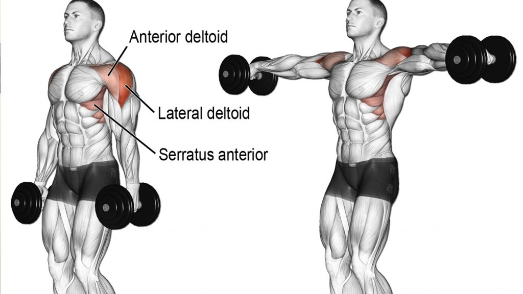 How To Build Bigger Delts: The Top 7 Shoulder Workouts For