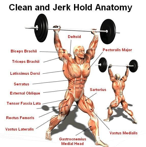 10 Greatest Benefits of the Clean and Jerk Exercise – Fitness Volt