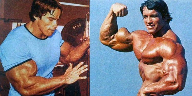 Best Biceps Workouts