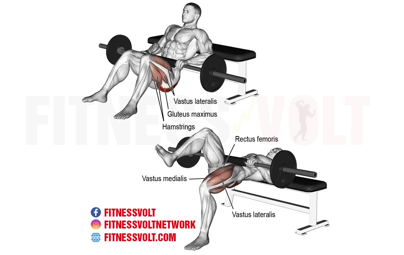 Barbell One Leg Hip Thrust Glutes Fitness Volt