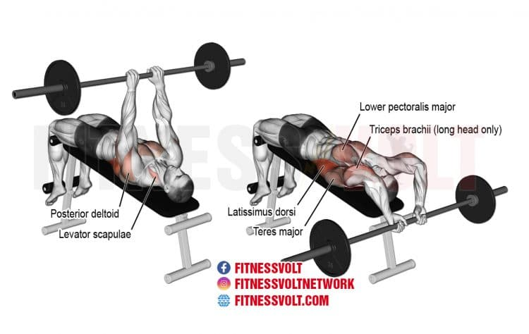 How To Do Decline Bent-Arm Barbell Pullover (Lats, Chest)
