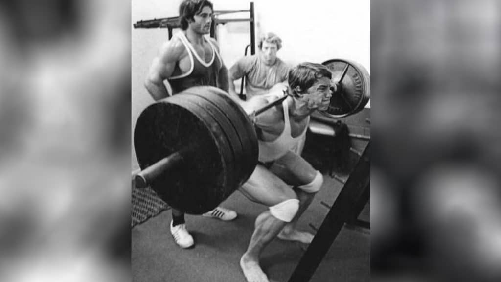 Free Weight Barbell Squat