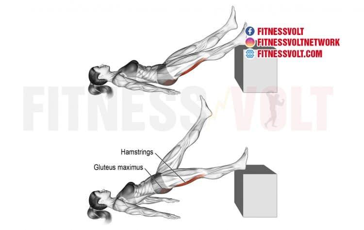 Lying Single Straight-Leg Hip Extension (Hamstrings, Glutes)
