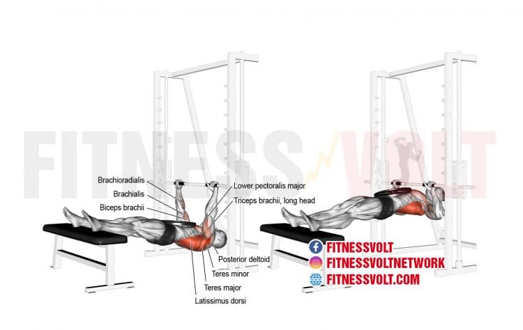Weighted Inverted Row (Back)