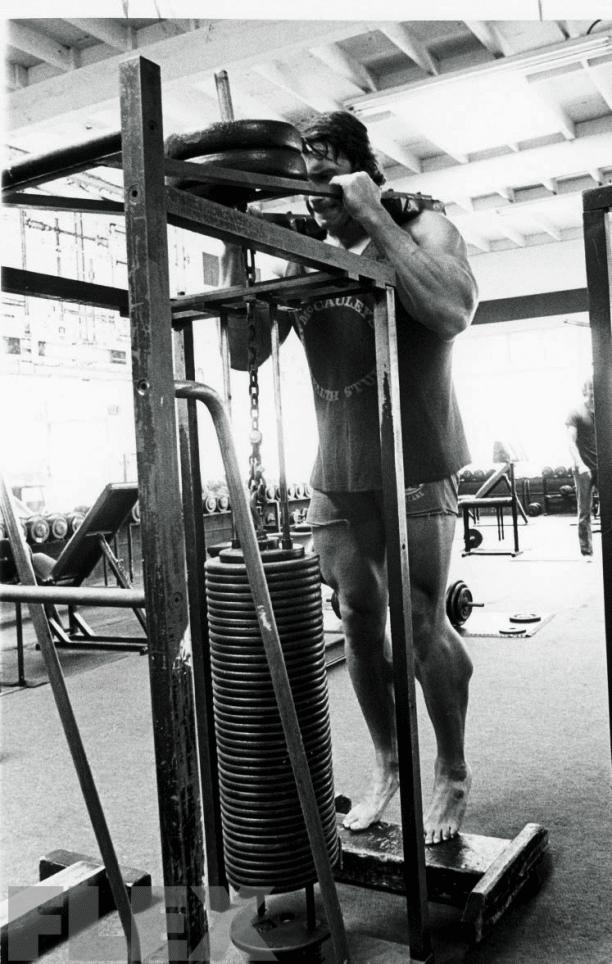 Arnold Calves Workout