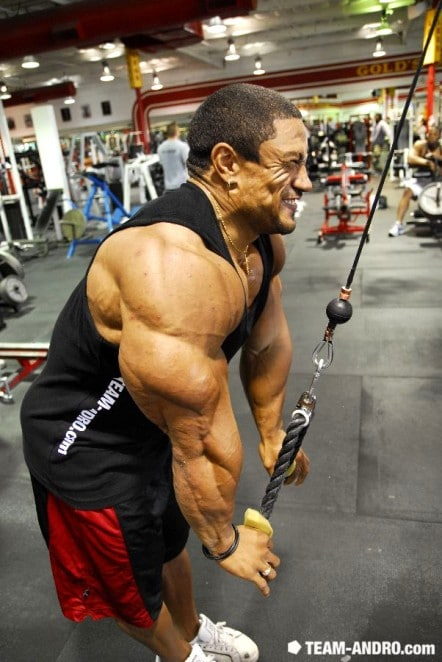 Roelly Winklaar Triceps
