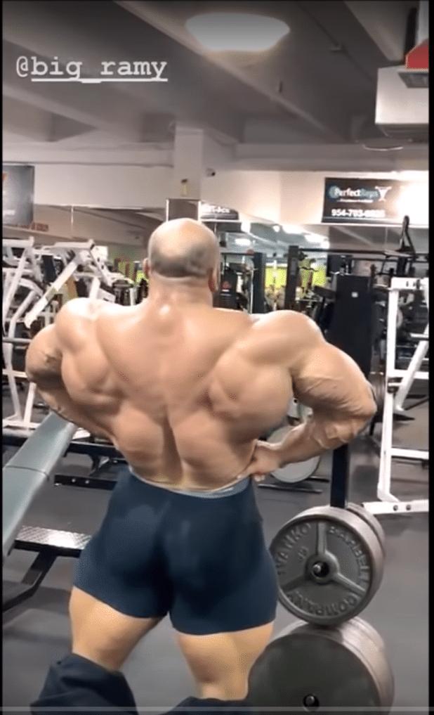 Big Ramy Back