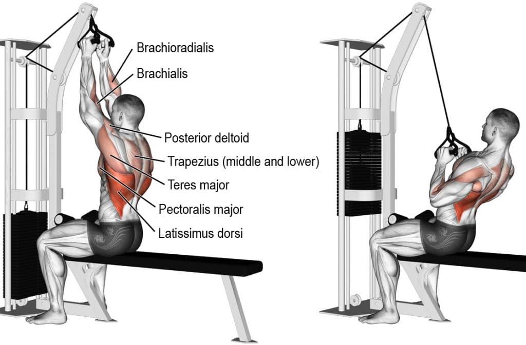 Seated Cable Pull Down