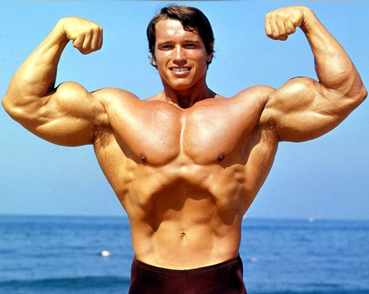 Arnold Schwarzenegger Front Double Bicep
