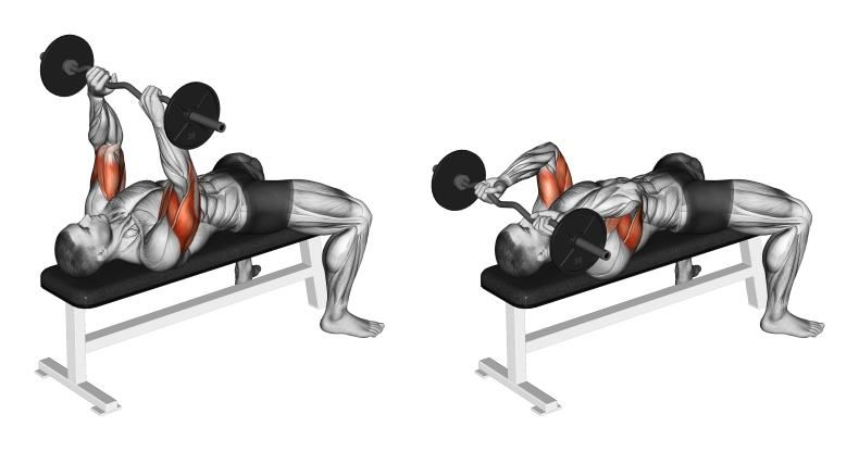 Amazing Supersets For Bigger, Stronger Biceps and Triceps ...