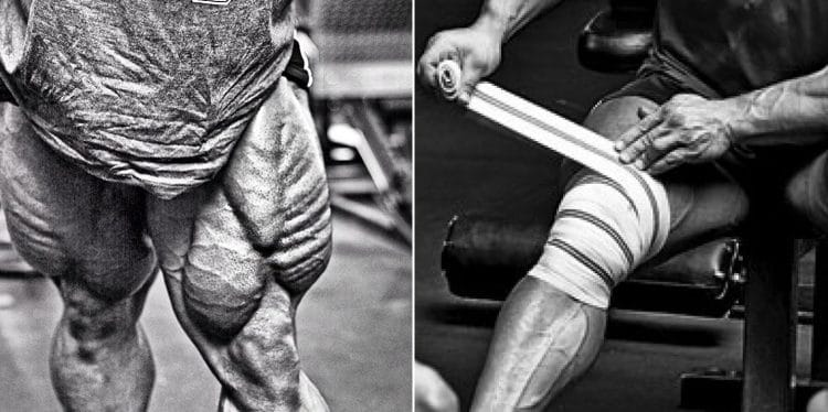 Big Quads Without Knee Pain