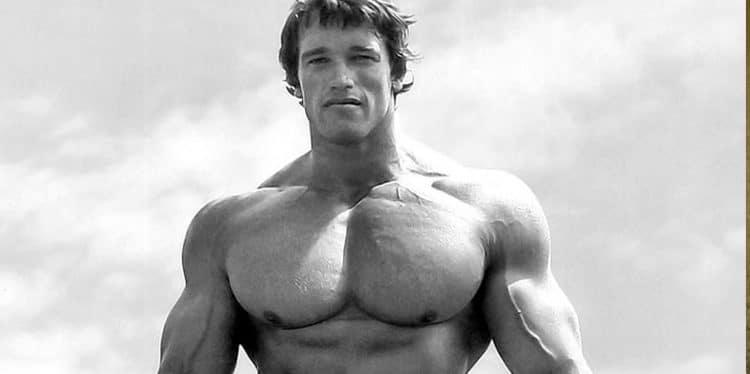 Bigger Shoulder