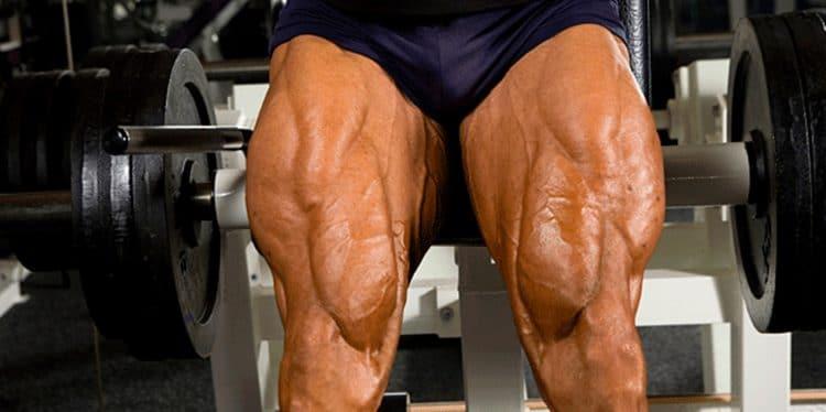 Build Bigger Legs