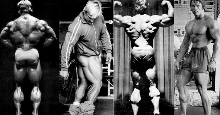 Greatest Previous-College Calf Exercises & Workouts