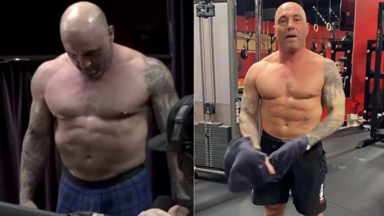 Joe Rogan Transformation