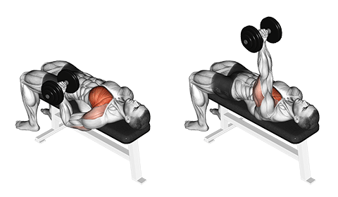 Single Arm Dumbbell Bench Press