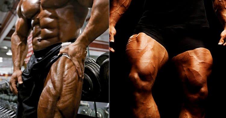 Best Quad Exercises
