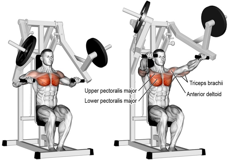 Chest Press Machine