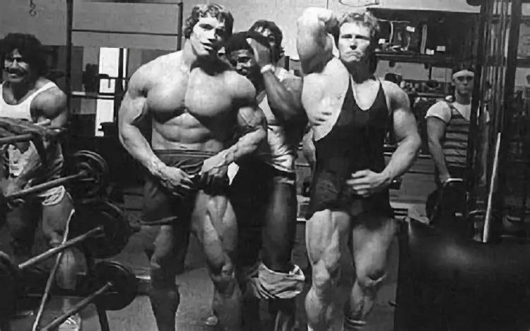 Arnold Quads