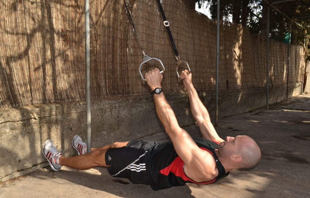 TRX inverted rows