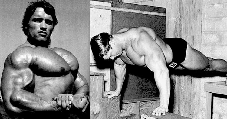 Bodyweight Chest Workouts