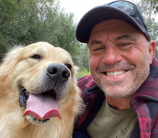 Joe Rogan With His Dog Marshall Mae Rogan