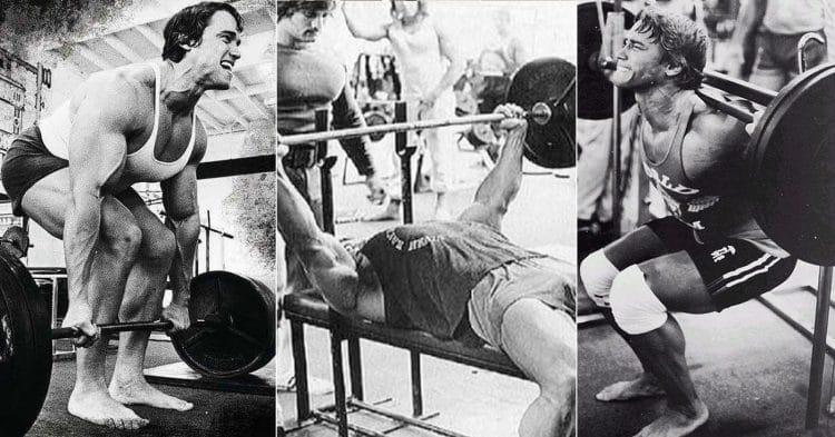 Push-Pull-Legs Routine