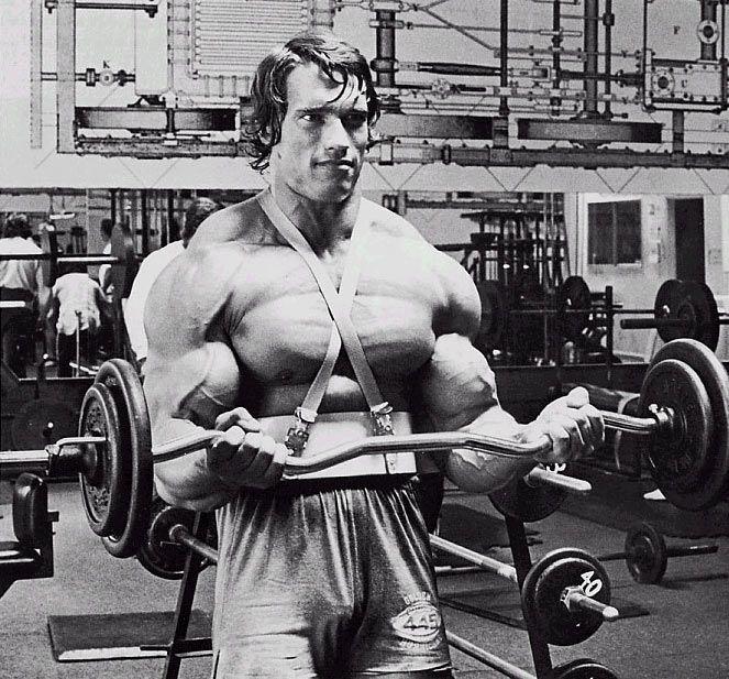 Arnold Biceps Training