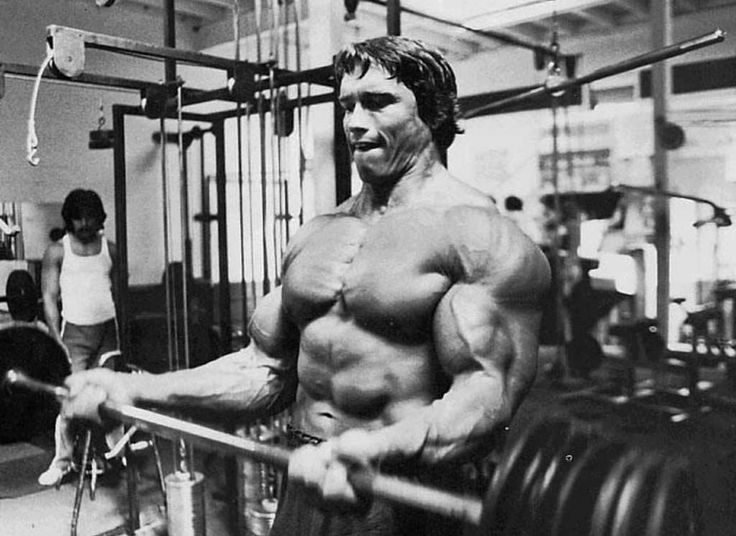 Arnold Cheat Curls