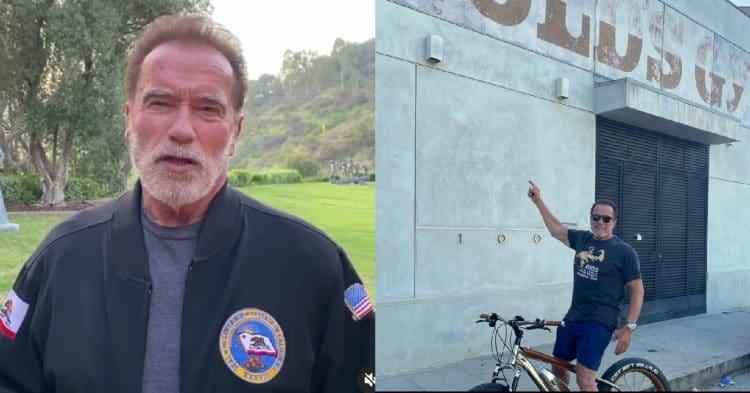 Arnold Schwarzenegger Gold S Gym