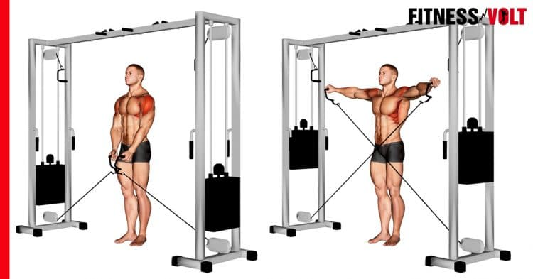Cable Lateral Raise Shoulder Exercise