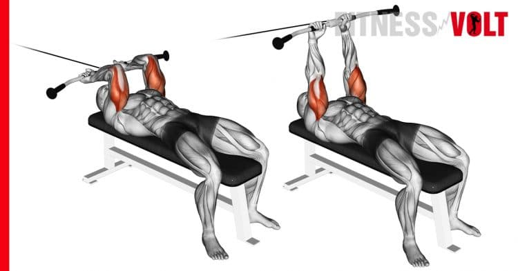 Cable Lying Triceps Extension Upper Arms Exercise