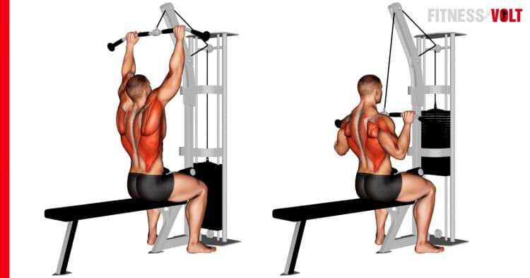 Cable Pulldown Exercise
