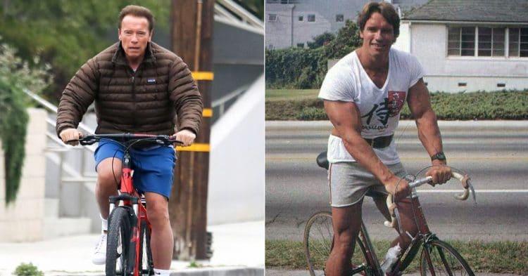 Arnold Schwarzenegger Quads