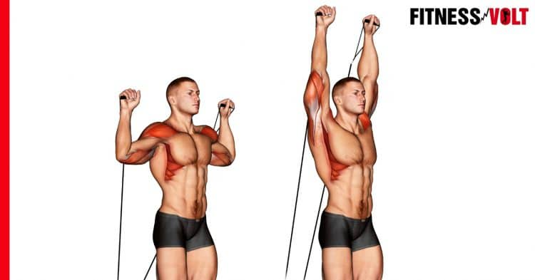 Cable Shoulder Press Exercise