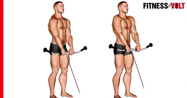How To Do The Cable Shrug