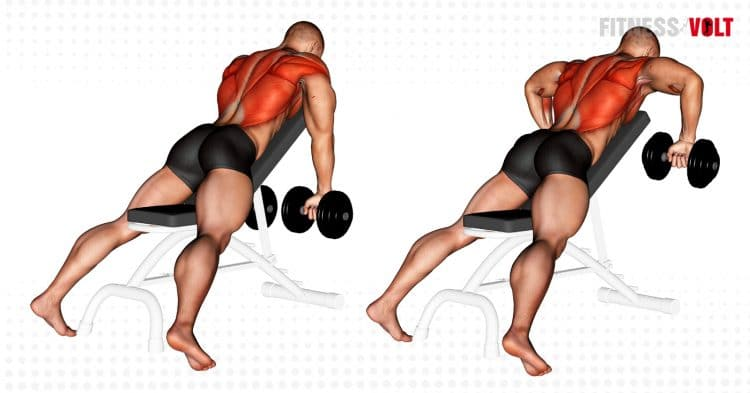 Dumbbell Incline Row Back Exercise