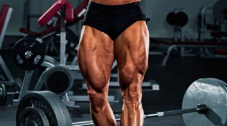 Strong Quadriceps