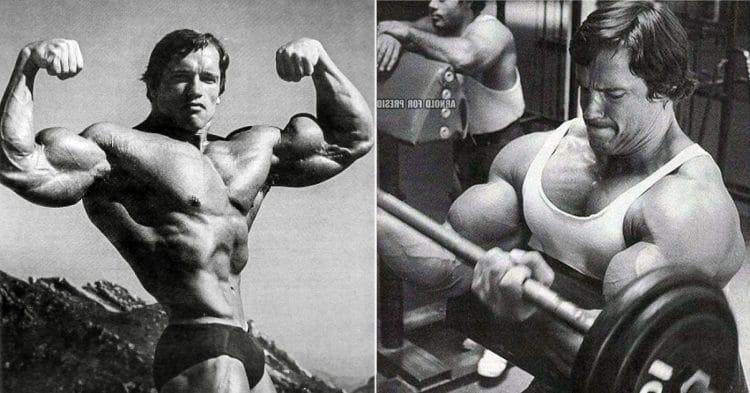 Best Short Head Biceps Exercises