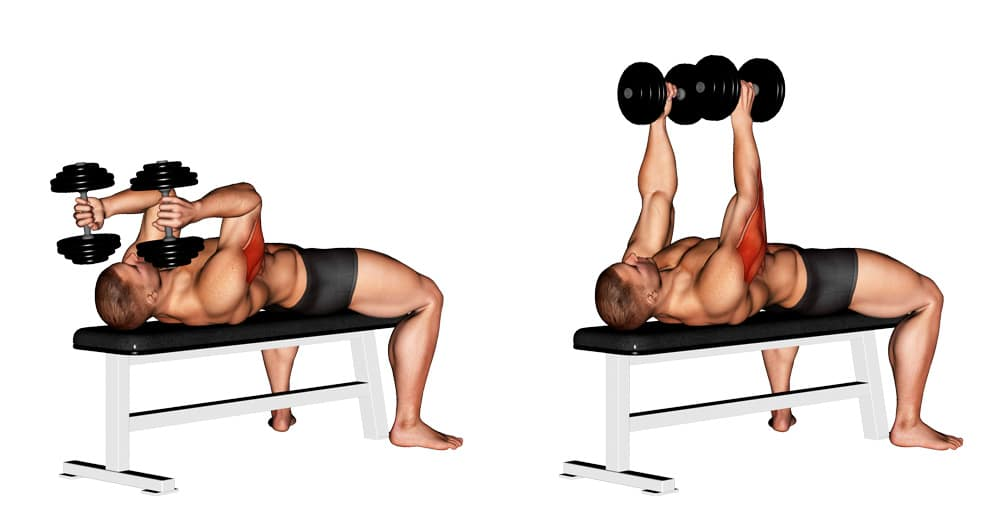 Dumbbell Lying Triceps Extension Upper Arms