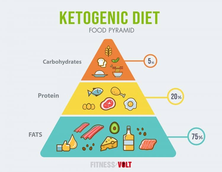 Ketogenic Diet Food Pyramid Infographic