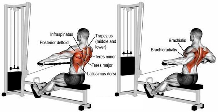 Wide Grip Seated Cable Rows