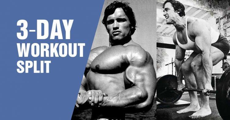3 Day Workout Split