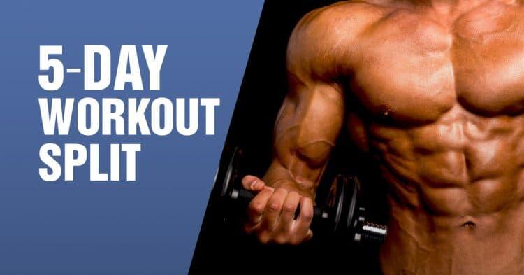 5-Day Workout Split Routine