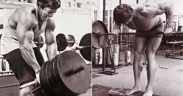 Best Barbell Back Exercises