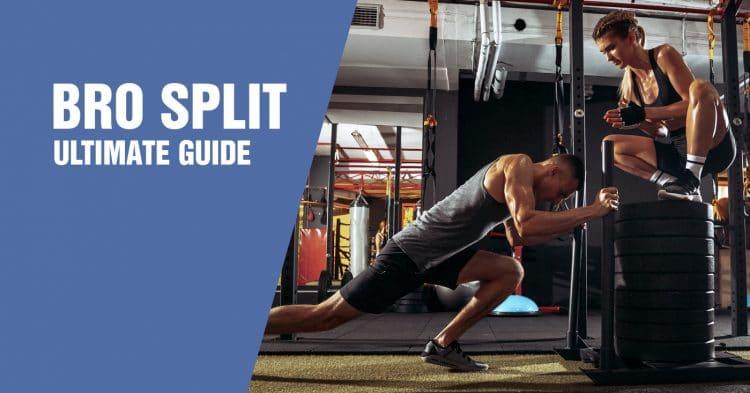 Bro Split Workout Guide