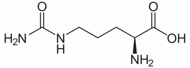 Citrulline Structure