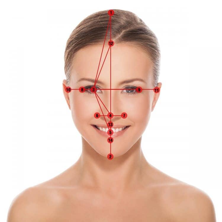 Golden Ratio Face Measurements