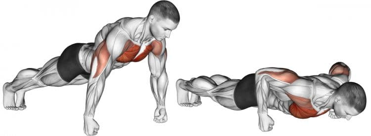 Knuckle Push-Up